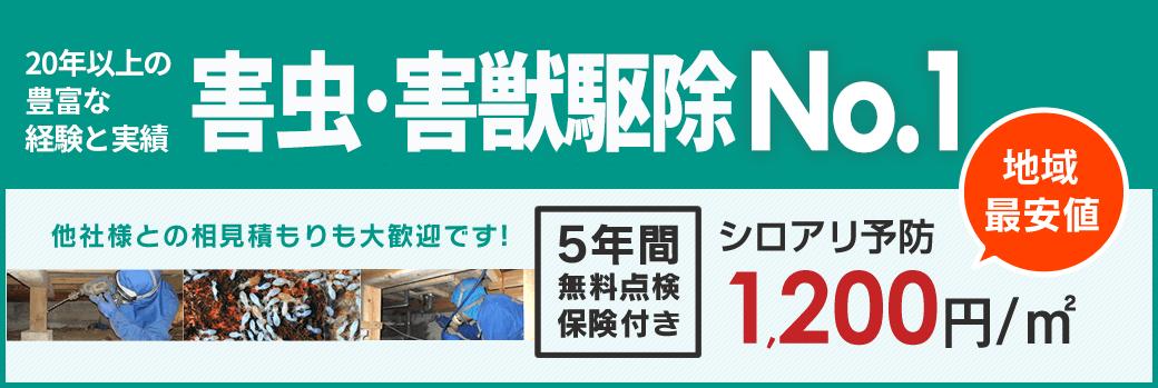 20年以上の豊富な経験と実績 熊本の害虫・害獣駆除No.1