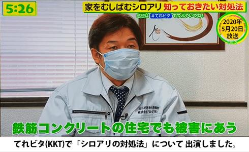 てれビタ(KKT)に「シロアリの対処法」についてテレビ出演しました。