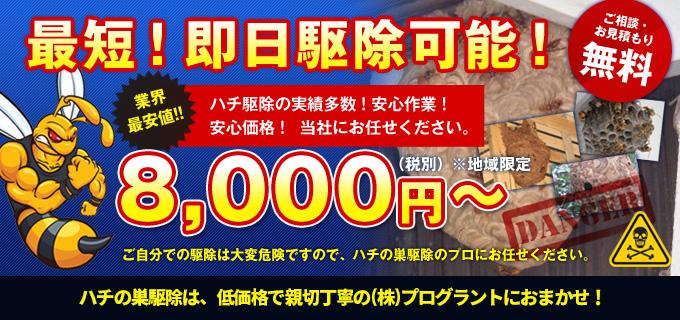最短!即日駆除可能!8,000円~