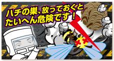 banner_hachi