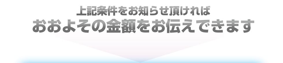 hachi_lp_10
