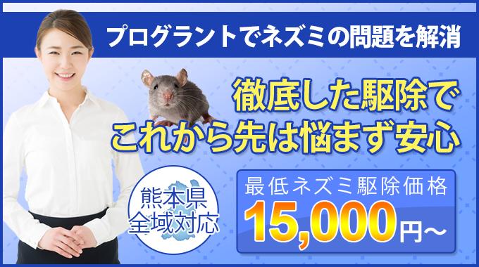 熊本美水でネズミの問題を解決