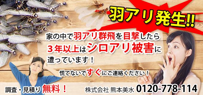 羽アリバナー_jpg