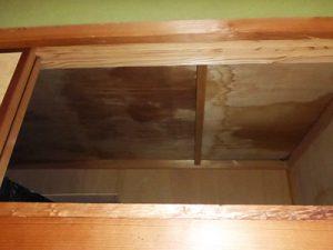 糞尿で天井板にシミが出来てしまったケース