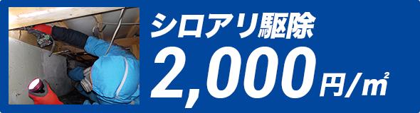 シロアリ駆除 2,000円/㎡