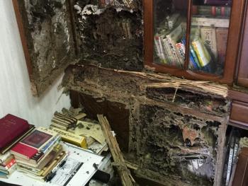 本棚のシロアリ被害