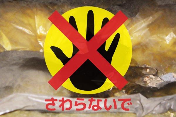 アライグマの糞尿はさらわないでください